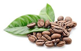 caféine et musculation