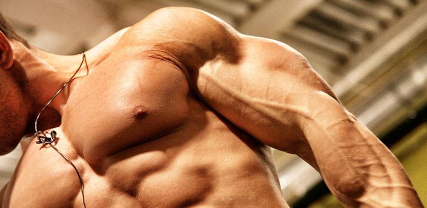 comment gonfler ses muscles