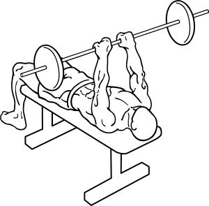 exercice gros bras
