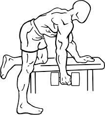 muscler le dos avec des haltères