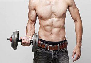 programme musculation pour ectomorphe