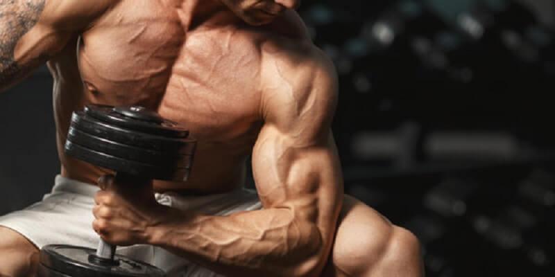 Qu'est-ce que l'hormone de croissance